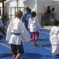 Démonstration / Initiation judo