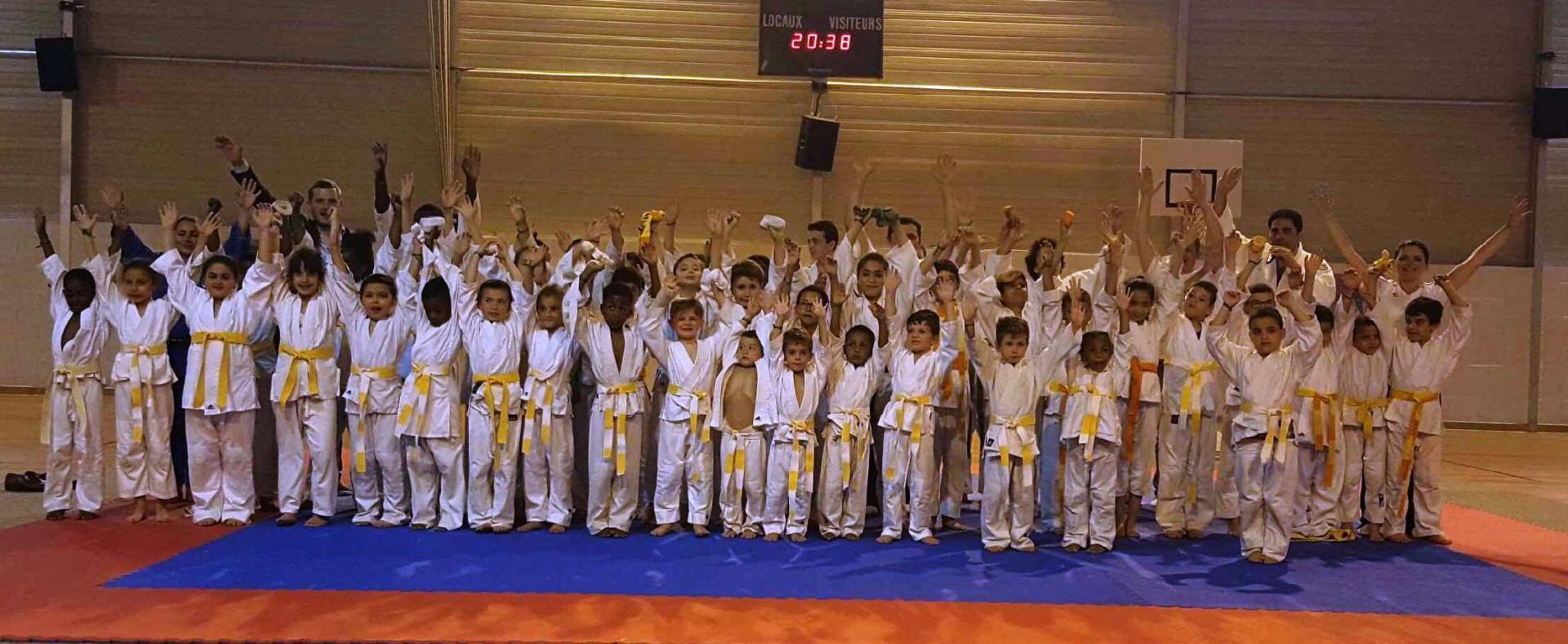 Gala judo 2017 photos de groupe 3